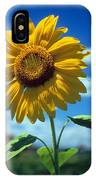 Sussex County Sunflower IPhone Case