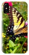 Swallow Tail Butterfly Enjoying The Sunshine IPhone Case
