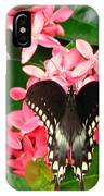 Swallow-wing Butterfly IPhone Case