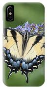 Swallowtail 20120723_24a IPhone Case