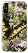 Swallowtail At Sand Wash IPhone Case