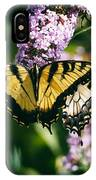 Swallowtail Butterfly At The Maryland Zoo IPhone Case