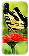 Swallowtail Resting IPhone Case