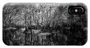 Swamp Island IPhone X Case