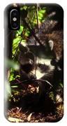 Swamp Raccoon IPhone Case
