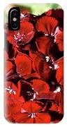Sweet William Macro IPhone Case