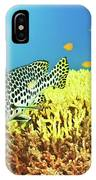 Sweetlips IPhone Case