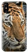 Swimming Tiger IPhone Case
