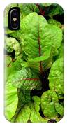 Swiss Chard In A Vegetable Garden 4 IPhone Case