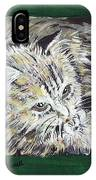 Tabby Cat With Cricket Trinket Box IPhone Case