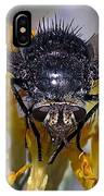 Tachinid Fly IPhone Case