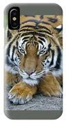 Takin A Break Tiger IPhone Case