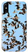 Taking Flight 2 IPhone Case