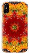 Talisman 2909 IPhone Case