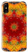 Talisman 2910 IPhone Case