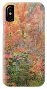 Tall And Wide IPhone Case
