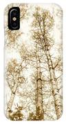 Tall Aspens IPhone X Case