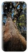 Tall Oak IPhone Case