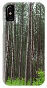 Tall Pines After The Rain IPhone Case
