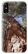 Tall Tree. IPhone Case