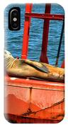Tanning Sea Lion On Buoy IPhone Case