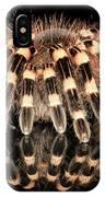 Tarantula Reflection IPhone Case