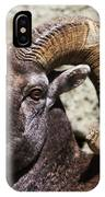 Taunting Bighorn IPhone Case