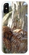 Tawny Owls In Love IPhone Case