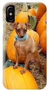 Teagun Rose Pumpkin Patch 3 IPhone Case