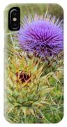 Teasel In Bloom IPhone Case