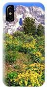 Teton Spring In The Valley IPhone Case