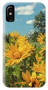 Teton Sun IPhone Case