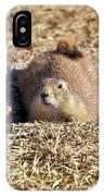 The Amazing Black-tailed Prairie Dog IPhone Case