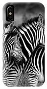 The Amazing Shot Of Zebra IPhone Case
