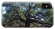 The Angel Oak In Spring IPhone Case