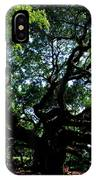 The Angel Oak In Summer IPhone Case