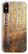 The Autumn Sun In The Birch Forest IPhone Case