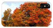 The Beauty Of Autumn  IPhone Case