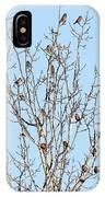 The Bird Tree IPhone Case