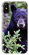 The Black Bear Stare IPhone Case