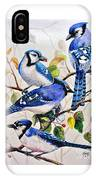 The Blues IPhone Case