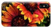 The Bold And Beautiful Pair IPhone Case