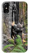 The Burly Bear Cub - Muir Woods National Monument - Marin County California IPhone Case