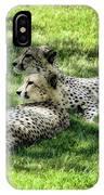 The Cheetahs IPhone Case