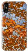 The Color Of Fall 1 IPhone Case