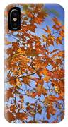 The Color Of Fall 2 IPhone Case