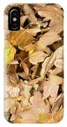 The Colors Of The Leaves In Autumn IPhone Case