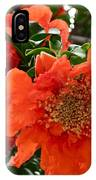 The Colour Orange IPhone Case