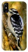 The Downy Woodpecker IPhone Case