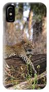 The Elusive Leopard IPhone Case